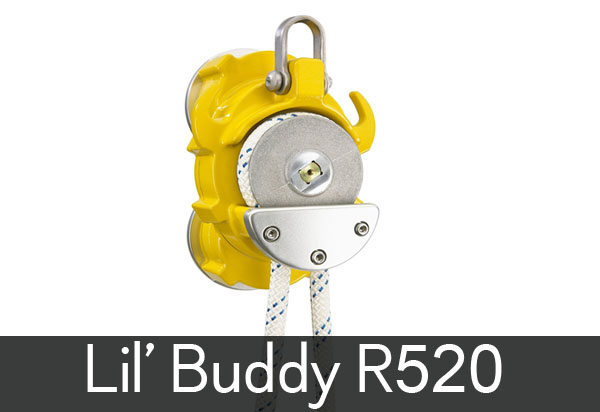 lil-buddy.jpg